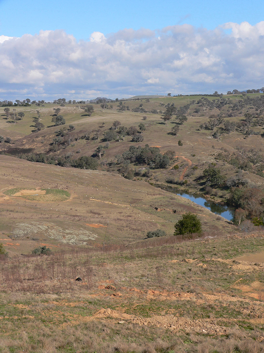 Becoming involved in the Rivers of Carbon project has allowed Yass farmers David and Jane Major to fence off a stretch of river frontage to rehabilitate the riparian area and provide more grazing for their stock.
