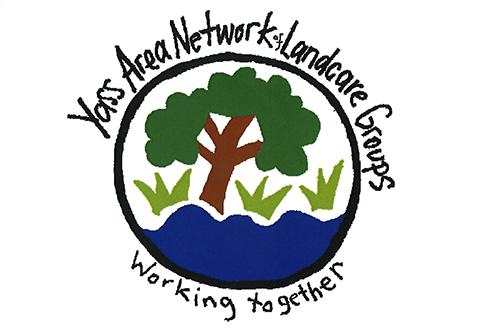 YAN logo